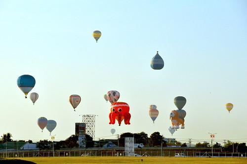 2016 Philippine Hot Air Balloon Fiesta