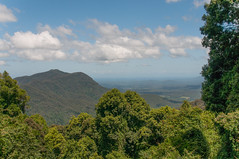View from the lookout