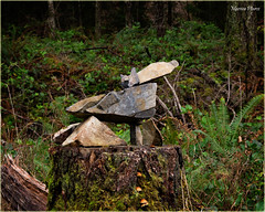 canine inukshuk - not just a pile of rocks...