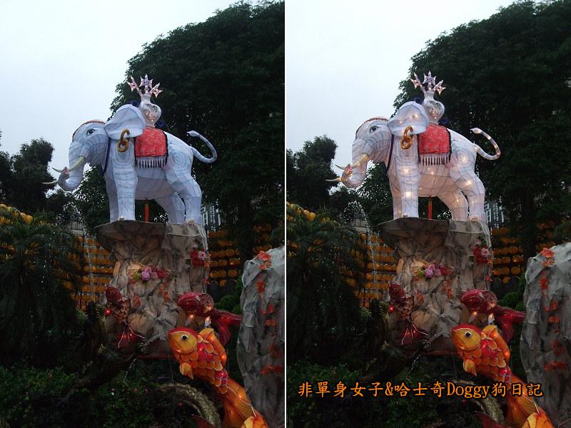 龍山寺花燈&小燈籠18