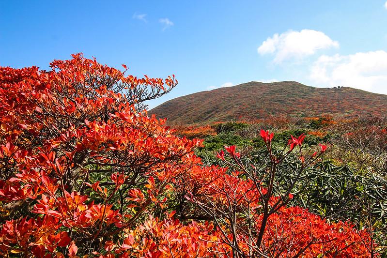 2014-09-28_00494_栗駒山.jpg