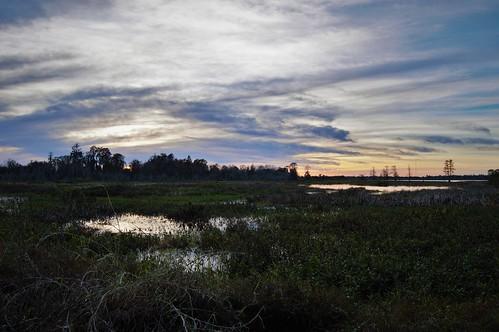 ranch county b sunset sun water set bar circle landscape florida magic central reserve hour fl lakeland polk cbbr