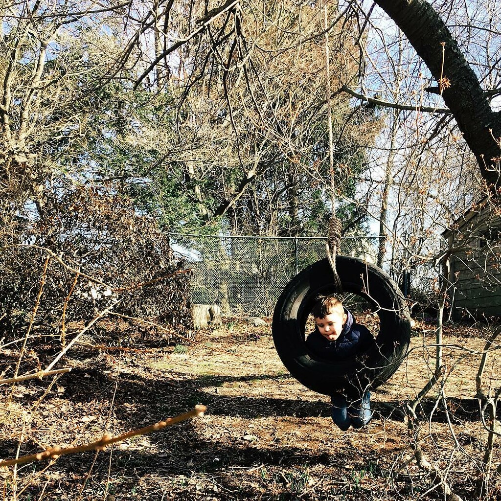 Pierce put up a tire swing in the backyard today. I think Luther approves. #instaluther #tireswing #children #childhood