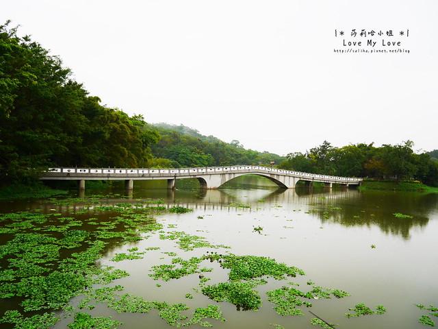 新竹一日遊景點青草湖 (13)