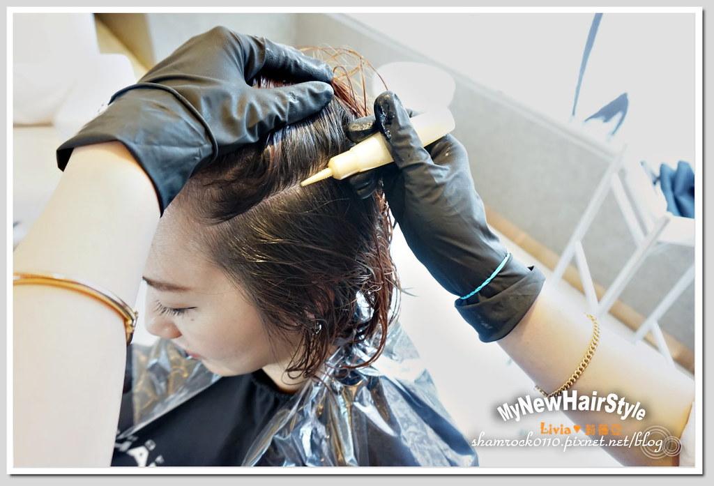 HappyHairTon短髮+墨綠色染髮 - 15