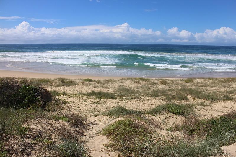 Beaches in Wollongong
