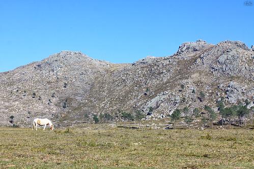 Lamas de Mouro - PNPG