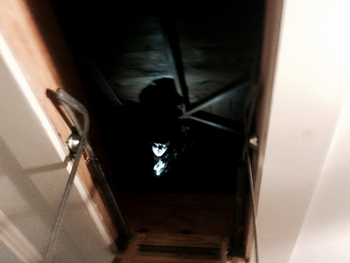 Josiah in the Attic (March 21 2015)