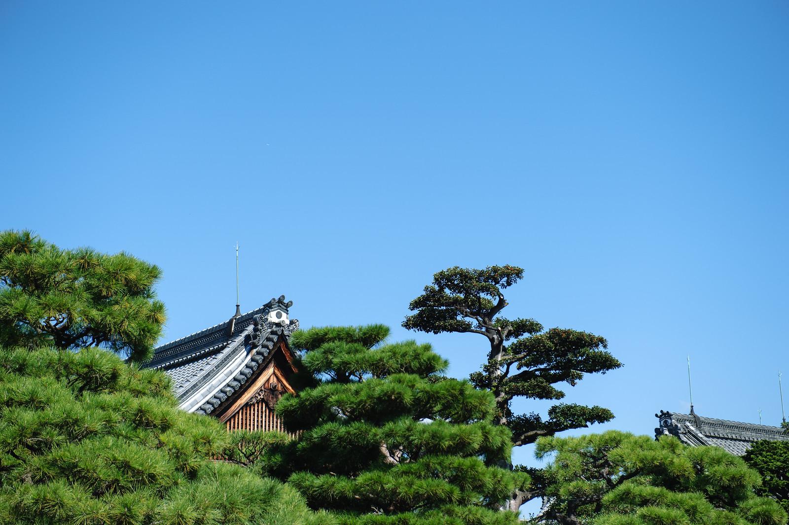 2015VQ@Kyoto-112