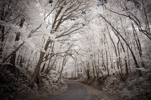 Copps Chapel Road Infrared