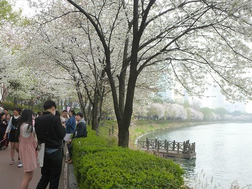 C16-Seoul-Parc Seokcho(13)