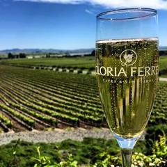 Sparkling wine at Gloria Ferrer Caves & Vineyards, Sonoma, California