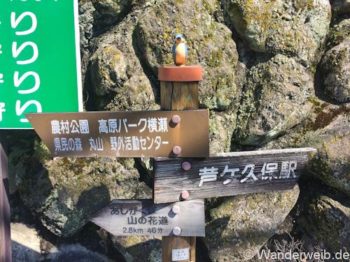 hinata_chichibu2 (10 von 1)