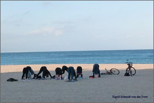 barcelona catalunya portvell platge sigridschmidtvondertwer sigridquintanafont gimnàsdeplatge