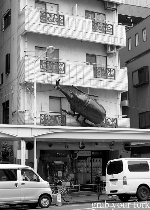 Giant Japanese rhinoceros beetle in Kitchentown on Kappabashi Dori in Tokyo