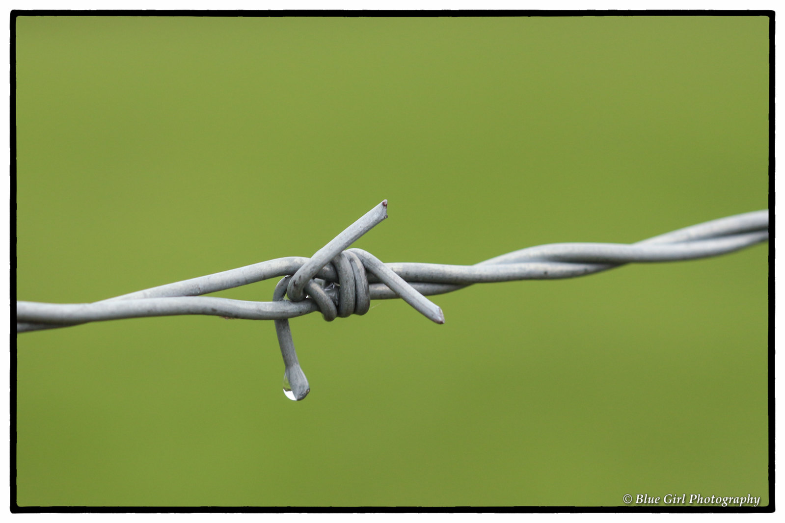 Barbed wire droplet