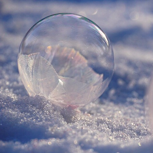 A frozen bubble in snow