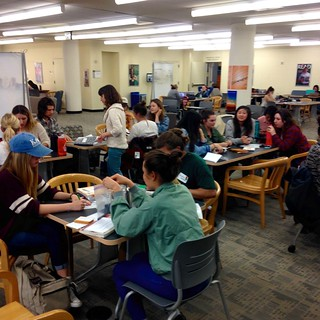 capstone and cornerstone seed workshop with USF seed library in gleeson library