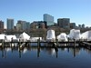Boston skyline and Charles River from the Cambridge Parkway by David Coviello