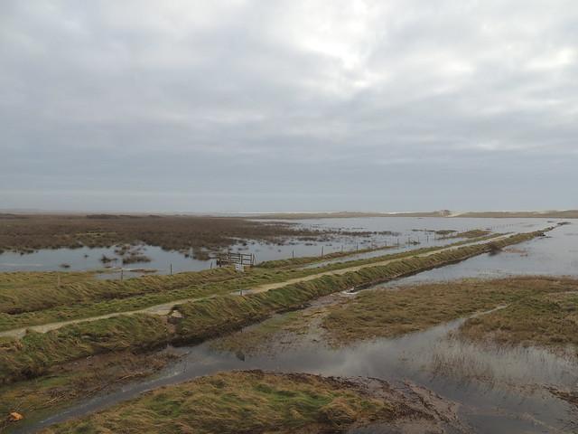 La vie poétique - L'arrière-pays sous les eaux - Tréguennec - Finistère - Hiver 2016