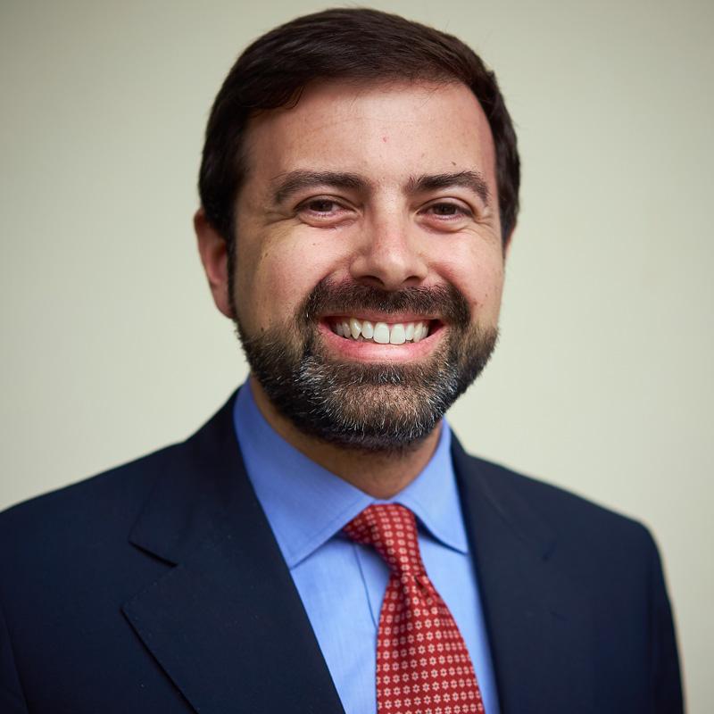Professor Davide Mattia