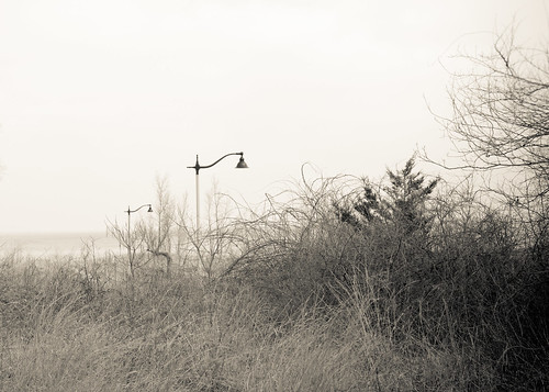 beach sand dunes indiana brush lamppost desolate oneofthesethingsisnotliketheother millerbeach