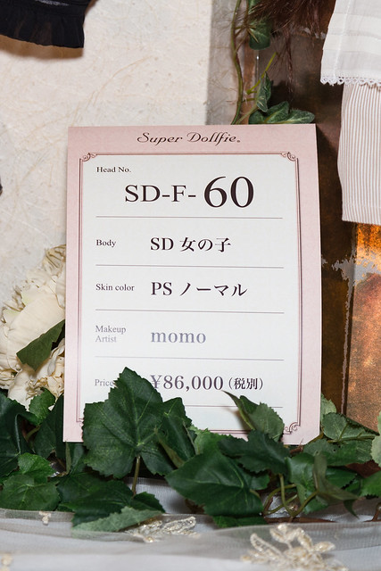 HTドルパ京都13 フルチョイスワンオフ SD F-60