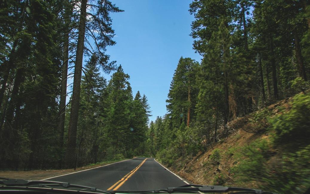 Yosemite-0193