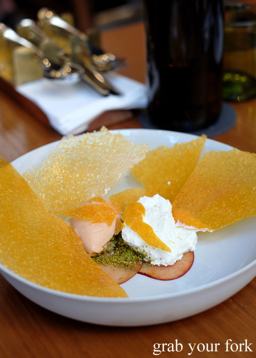 Buffalo ricotta and lemon thyme peaches benneath the honeycomb shard at Kensington Street Social in Chippendale