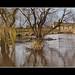 Wakefield Floods by SFB579 Namaste