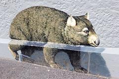 Street Art, Hobart