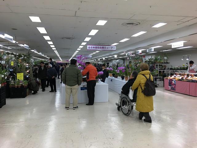 2016/01/07 サンシャインらん展 会場