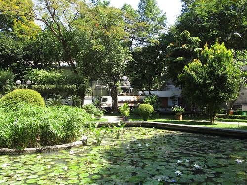 Ho Chi Minh Ville: un petit parc au coeur de la ville