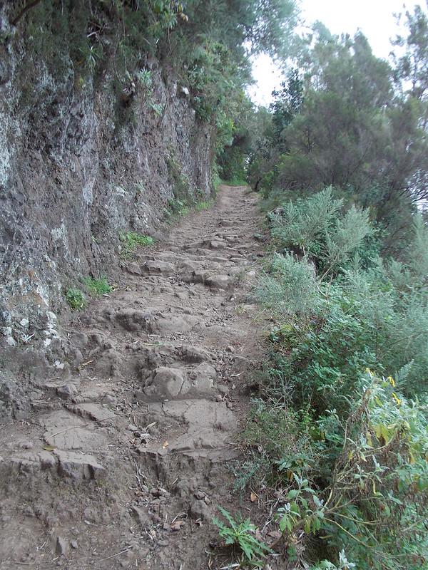 Anaga Hiking (100)