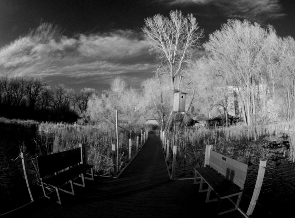 Wood Lake_6