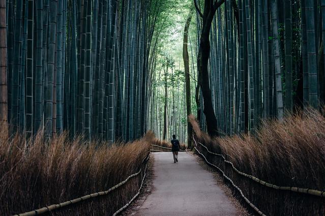 kyoto_arashimaya_10