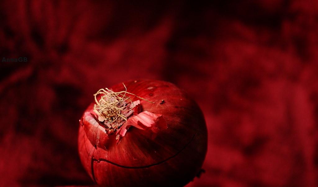Maroon onion