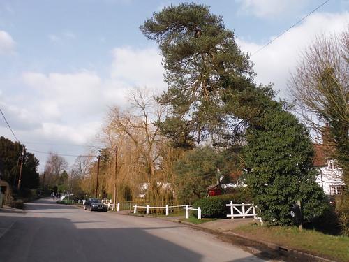 Road through Arkesden