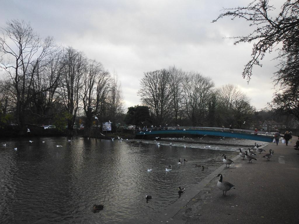 River Wye 3