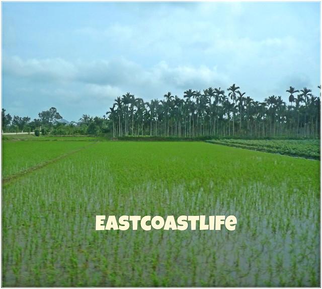 Hainan village