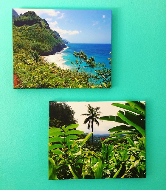 Thanks to a Groupon, we finally got canvas prints from our Hawaii trips to hang in the kitchen. I took the top photo in Kauai; Josh took the bottom photo in Maui. They look so good against the aqua paint! I wish I was in Hawaii right now, mmmmm.