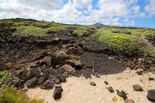 Immagine di Spot Jameos Spiaggia con una lunghezza di 350 metri. beach lava agua lanzarote playa canaryislands vulcano volcan jameos