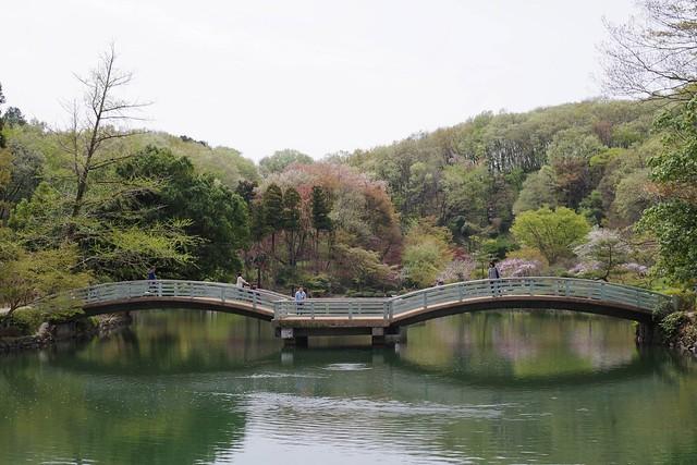 2016/04/10_薬師池公園-0