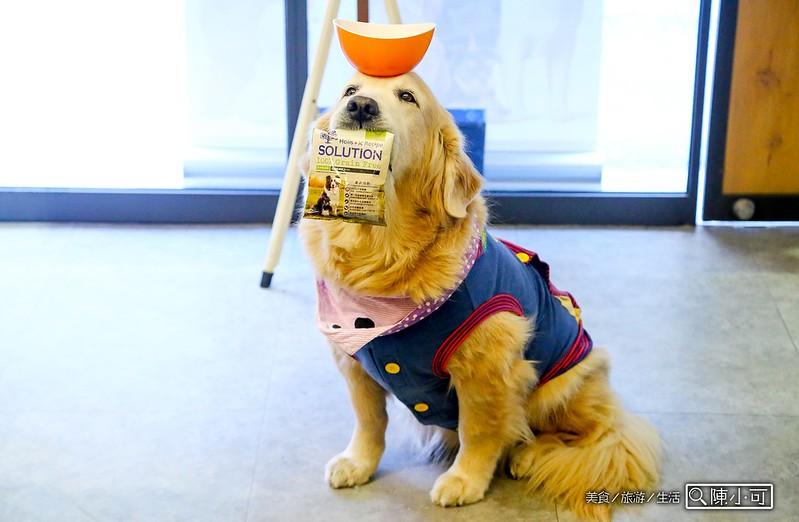 耐吉斯無穀樂活寵物狗狗同樂會