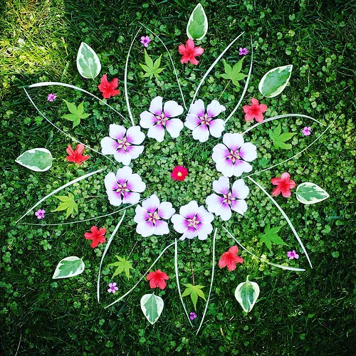 Garden Mandala No. 34 It's such a beautiful day! Happy Friday, friends! #spring #waldorfhome #mandala #gardening #flowers #leaves #landart #mallow #flowerstagram #azalea #periwinkle #oxialis #grass #japanesemaple #gardenart #ephemeral