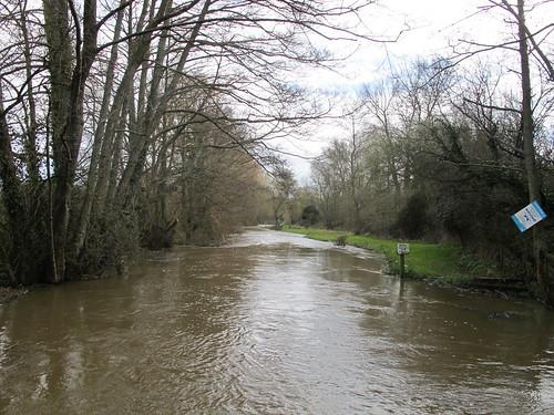 The Dun River, from bridge in Lockerley