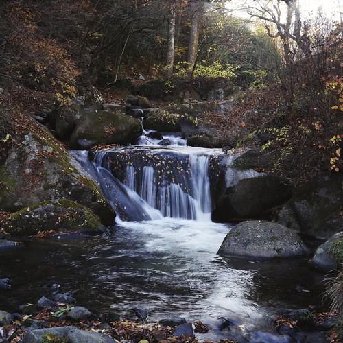 Flow of the autumn river  (minolta AUTOCORD)
