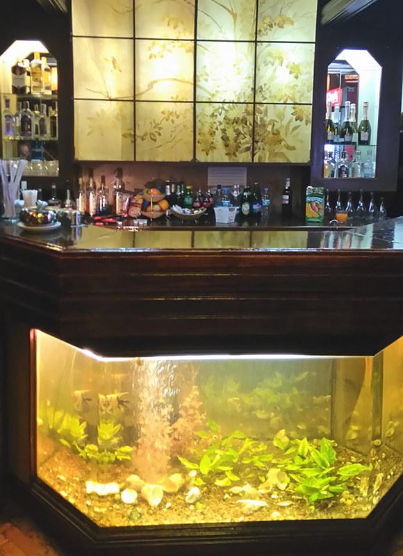 babylon bar cinema house kiev kyiv