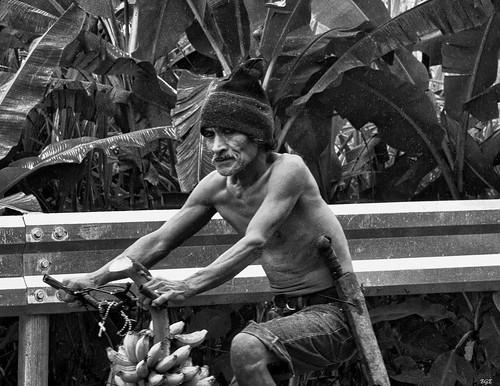 shirtless man rain cycling philippines banana heavy negros bulanon