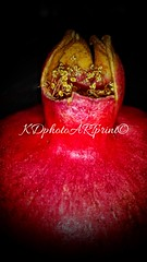 Pomegranate Crown